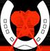 Logo FPG - Federatie Paardrijden Gehandicapten